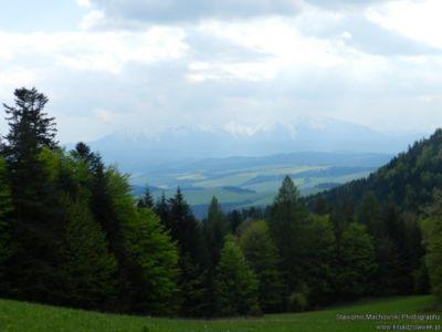 Widok z Pienin na Tatry