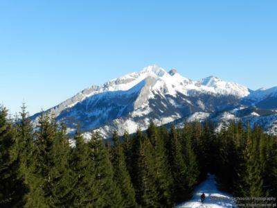 Widok spod szczytu Gęsiej Szyi na Tatry Bielskie